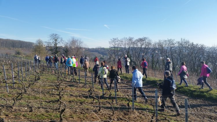 ARPSA Photo randonnée du 17 février à Chateau-Thierry