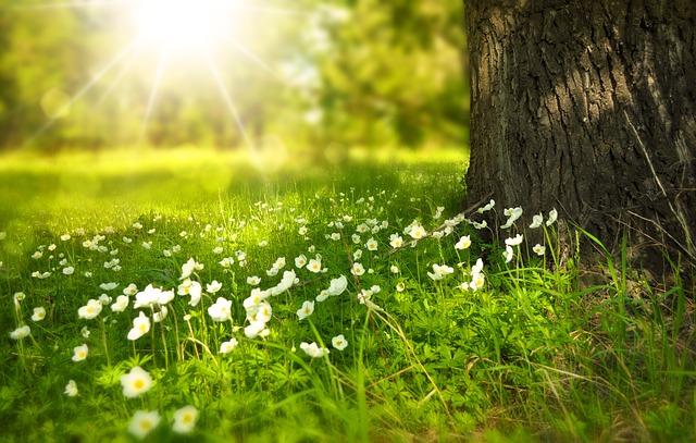 Randonnée de printemps à Nogentel le jeudi 30 mai