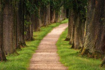 Chemin randonnée trilport