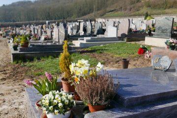 fleurs sur tombe dans cimetierre